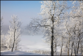 Winter view from lot 7